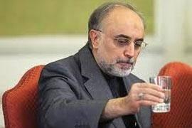 مجلس شورای اسلامی به علی اکبر صالحی برای تصدی وزارت امور خارجه رای اعتماد داد.