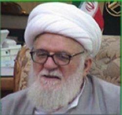 اتهام دخالت ایران در زمینه گسترش تشیع در مصر بیپایه و اساس است