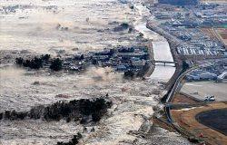 در پی وقوع زمین لرزه ای شدید در شیلی فرمان تخلیه یك منطقه صادر شد