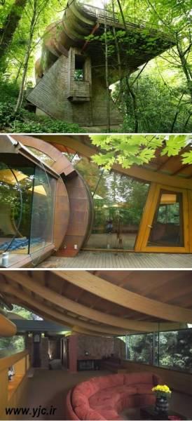 5 خانه درختی جالب دنیا / عکس
