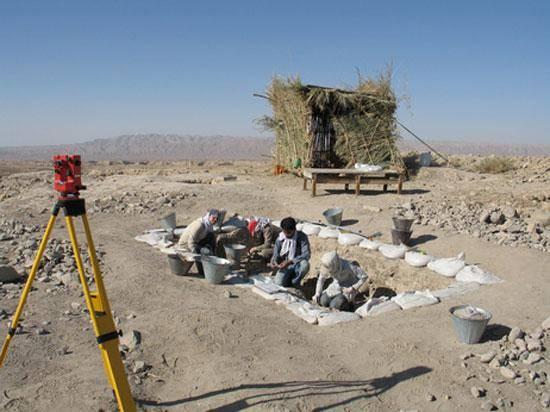 ایران منشا کشاورزی در 12 هزار سال پیش بود