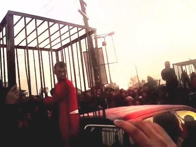 گروگانهای داعش در قفس/تصاویر