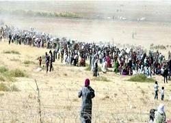 درخواست کمک صدها کرد سوری گرفتار میان داعش و ترکیه