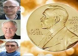 برندگان نوبل شیمی 2015 معرفی شدند