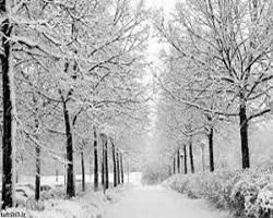 آیا امسال زمستان سردتری خواهیم داشت؟