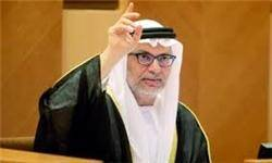 مقام اماراتی:استقبال وزیر خارجه عراق از هیأت انصارالله یک «پیام منفی جدید» است
