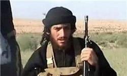 پایگاه صهیونیستی: داعش مسئول کشته شدن العدنانی است نه آمریکا و روسیه