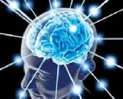 شاخص توده بدنی بالا برای مغز مضر است