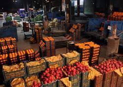 ارسال رایگان چند تن میوه و سبزیجات به کربلا