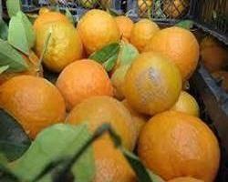 برای فشار خون بالا آب نارنج بخورید