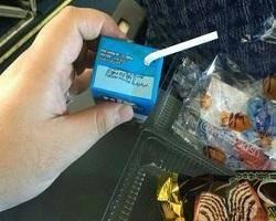 شیر ویژه مدارس چگونه از هواپیما سر در آورد؟ + عکس