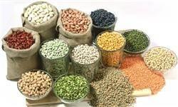 عدم رسیدگی به تولیدات کشاورزی موجب افزایش روزافزون سرطان شده است/ محصولات تراریخته سرطانزاست