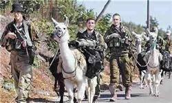 ربات به جای شترسانان؛ پیشرفت اسرائیل بعد از شکست 2006 !