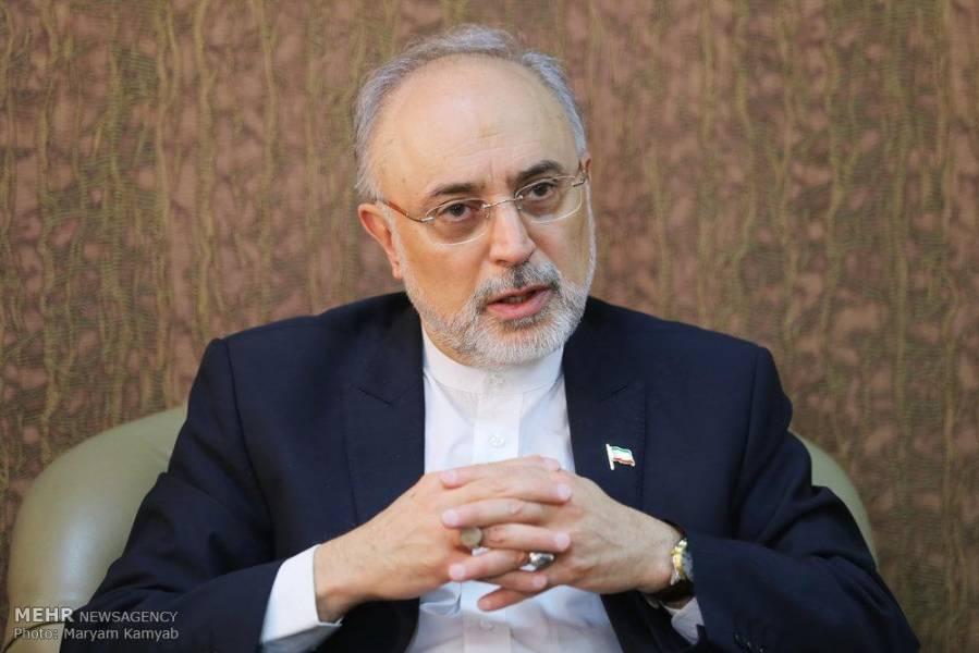 صالحی: سفر احمدی نژاد به ابوموسی توافق با امارات را خراب کرد/ گفتگوی 2 ساعته در خانه سعود الفیصل