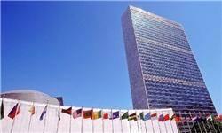 پروژه مشترک ملل متحد و ایران برای حفظ تالابها