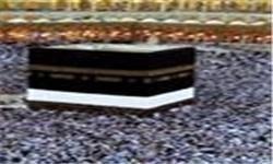 افزایش تعداد حاجیان فوت شده ایران به ۲۶ نفر/ خاکسپاری ۷ نفر از آنها در سرزمین وحی
