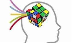 تحلیل نظریۀ ذهن بسطیافته و لوازم آن