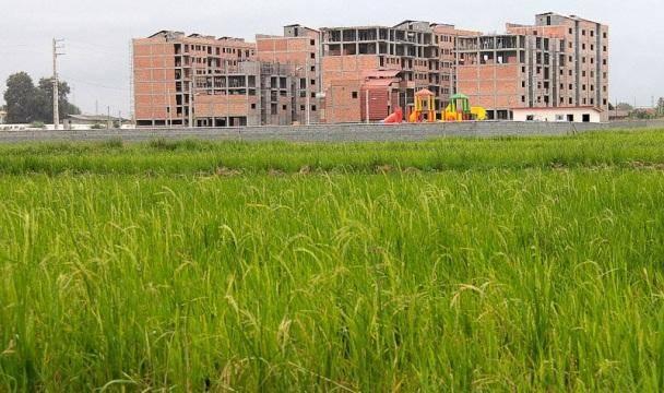 ساخت وساز اینبار در حاصلخیزترین خاکهای کشور