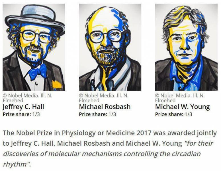 جایزه نوبل پزشکی به سه پژوهشگر آمریکایی تعلق گرفت