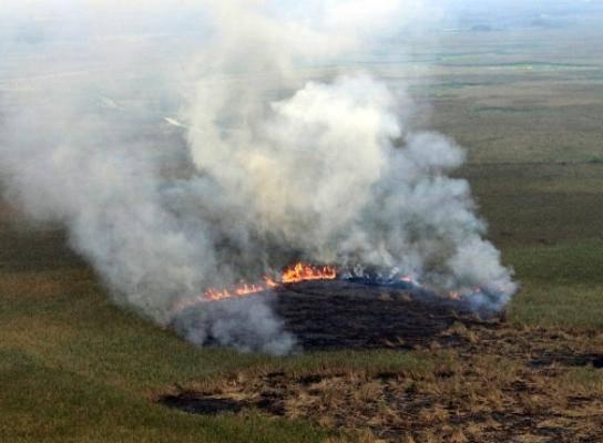 مهار آتش سوزی تالاب های گری بلمک پلدختر