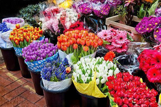 سهم 24میلیون دلاری ایران از بازار گل