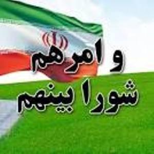 رئیس شورای اسلامی شهرستان دیر انتخاب شد