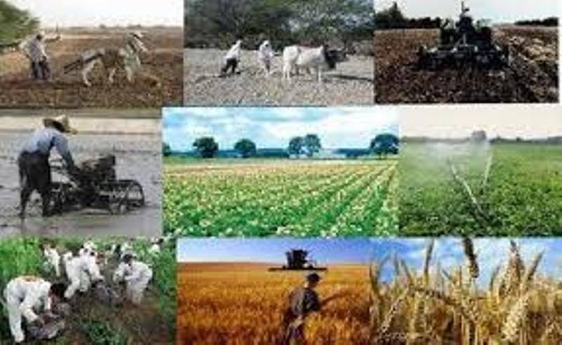 وزارت کشور از روستاییان ارایه دهنده برنامه توسعه روستا حمایت می کند