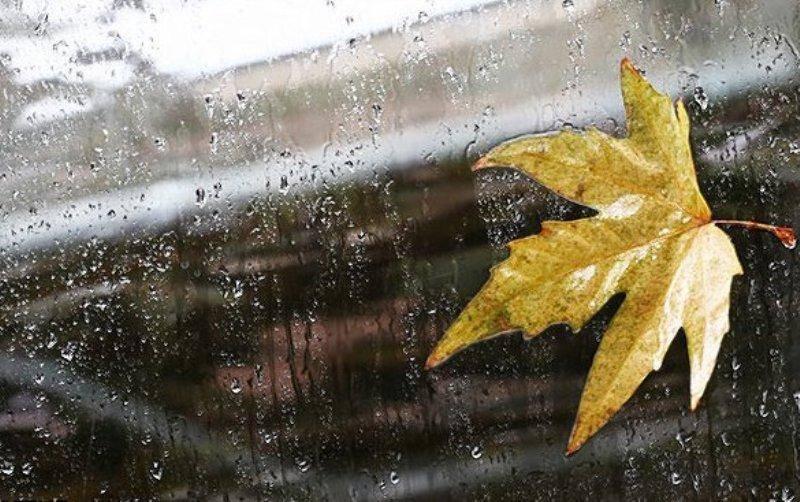 بارش فصل پاییز زنجان نرمال پیش بینی شده است