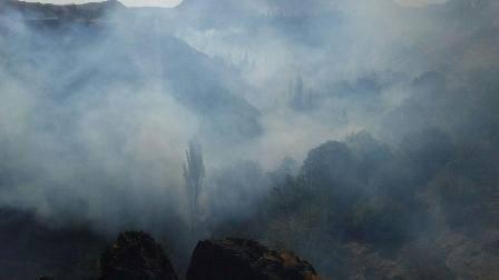 250 هکتار از باغات شهرستان بن در محاصره آتش