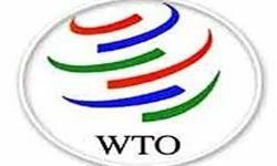 تبیین شرط تواناسازی در سازمان تجارت جهانی