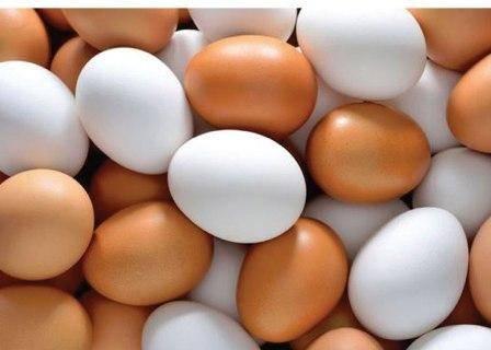 سرانه مصرف تخم مرغ در کردستان 11 کیلوگرم است