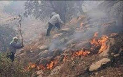 آتش سوزی مناطق جنگلی گالیکش در شرق استان گلستان
