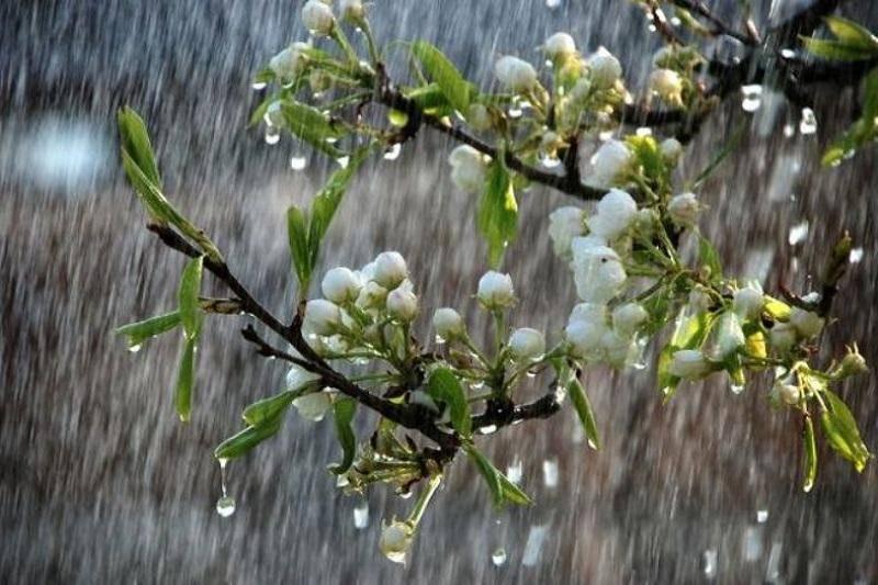 موج جدید بارشی از هفته آینده وارد خوزستان می شود