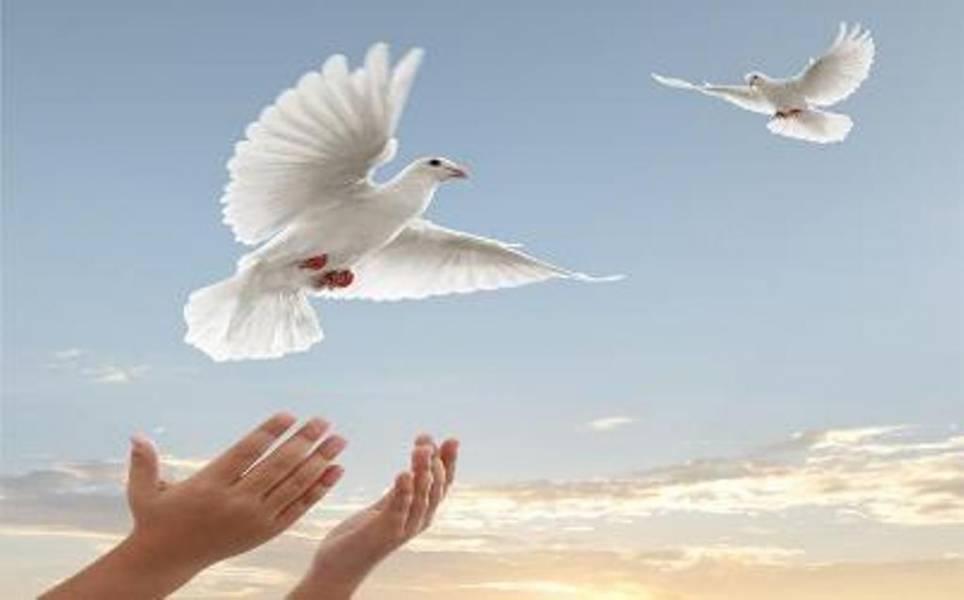 93 زندانی در اردکان آزاد شدند