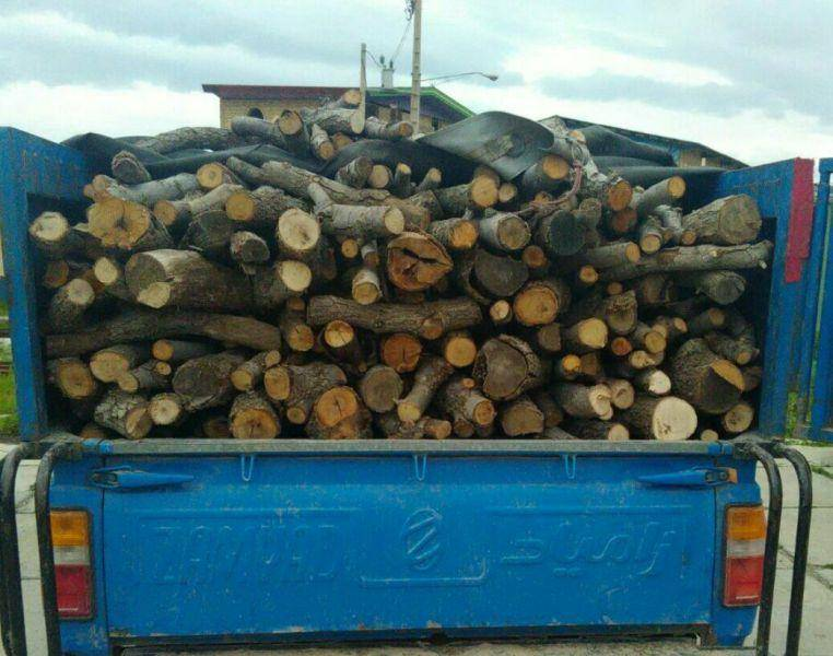 2.5 تن چوب قاچاق بلوط در پلدخترکشف و ضبط شد