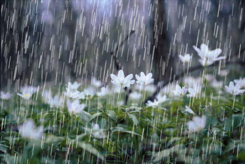 بارش های رگباری برای استان سمنان پیش بینی می شود