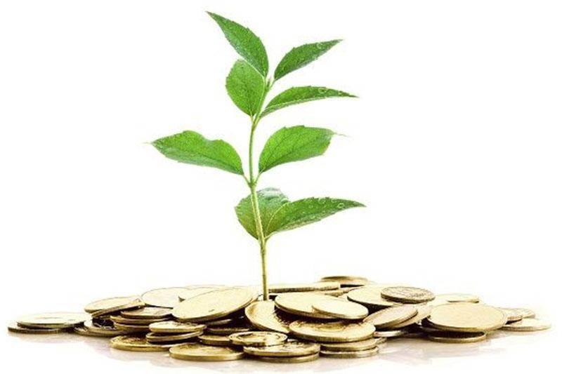 بانک کشاورزی مرکزی 2 هزار میلیارد ریال تسهیلات پرداخت کرد